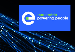 300X250 Banner Eurelectric V2