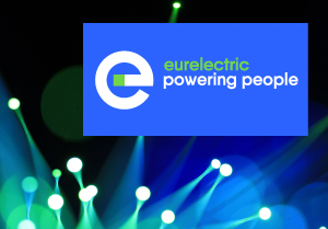 300X250 Banner Eurelectric