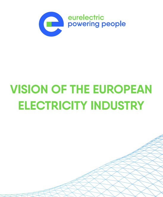 Vision of the European Electricity Industry