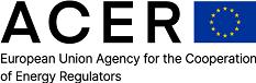 Acer Logo